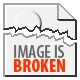 Thompson Tommy Gun Magazine & .45ACP Inert Rounds